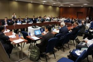 Plenary Session during the IPSI-3 Public Forum