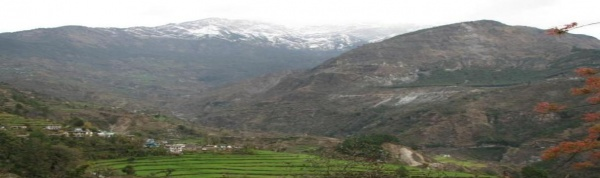 Terrace farming in Uttarakhand, target area selected for the COMDEKS Country Programme in India