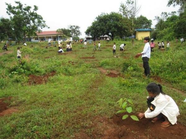 Photo 13 Reforestation in elementary school in Mondulkiri