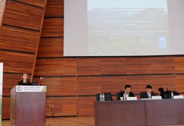 Ms. Diana Salvemini explains the COMDEKS Programme