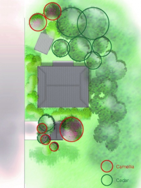 ◆Vegetation in a private house: Ground plan