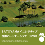IPSI pamphlet cover Japanese