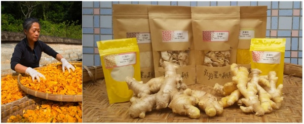 "Ginger and turmeric products developed by the ""Very Ginger"" processing team"