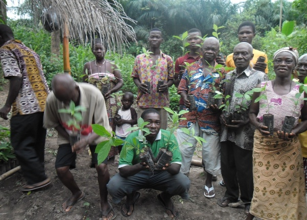 Farmers receive seedlings for planting on their farms