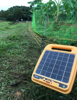 Solar-powered electric fence