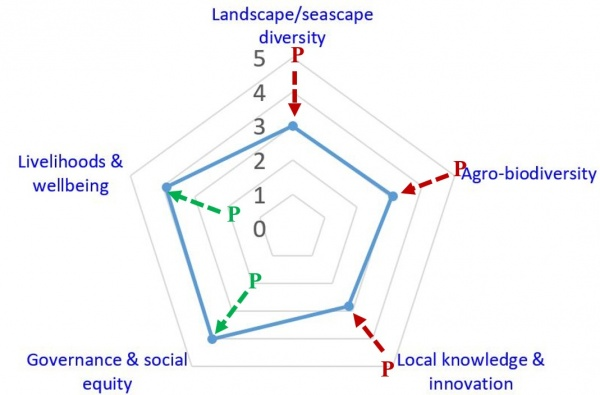 Figure 4 The outcome diagram of the landscape resilience evaluation counted by the indicator task group members in Dipit tribe (1: very low; 2: low; 3: medium; 4: high; 5: very high; P: evaluation of the past condition)