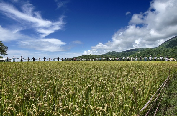 Celebration of harvest season in Dipit's rice paddy (Photo by Vision Way Communication Co., LTD)