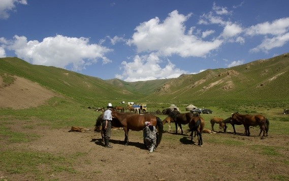 Picture 2: Local herders on summer pastures