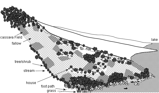 Fig. 3: A schematic figure of topography and land use in the area. (Drawn by Setsuko Nakayama, Features are not to scale.)