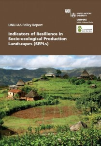 Cover of the UNU-IAS Policy Report (published in April 2013)