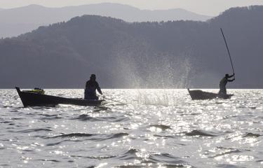 たたき網漁 三方湖