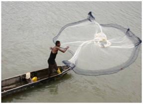 Photo 2: Fishing in the estuary.