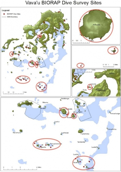 Figure 5 : Vava'u BioRAP Marine Survey Sites