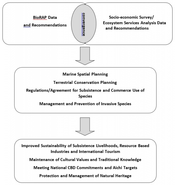 Figure 8 : A schematic representation of the linkages between the biological and economic assessments