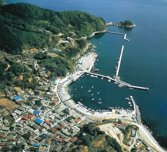 ◆Entire view of Sakihama village  (before the Great East Japan Earthquake)