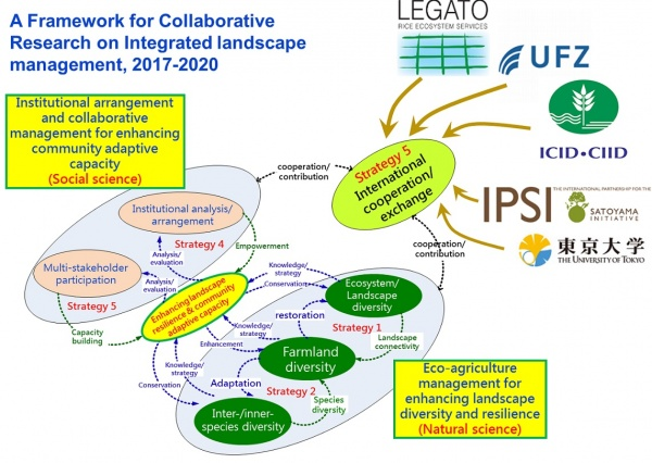Figure 5 The strategic framework for the 4-year Integrated project (2017-2020)