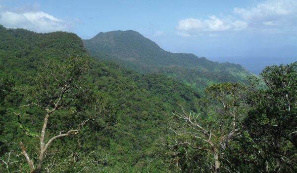 Community conserved area, COMDEKS Fiji