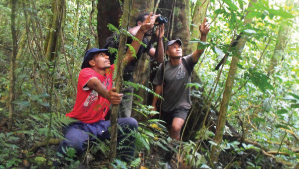 Site support group members are trained in bird identification and Important Bird Areas monitoring, COMDEKS Fiji