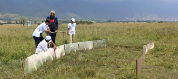 Constructing a nursery pond for the red-listed Central Asian Frog in Kuturgy village, COMDEKS Kyrgyzstan