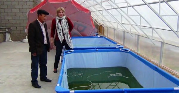 A spirulina algae farm in Tamchy village, COMDEKS Kyrgyzstan