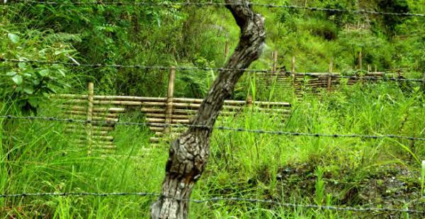 Bamboo check dams for erosion control at Pemochojay Ropta, COMDEKS Bhutan
