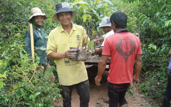 Selecting small trees in community nursery, COMDEKS Cambodia