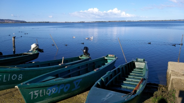 Figure 1. The Orbetello Lagoon seen from Orbetello (Photo: Guido Gualandi)