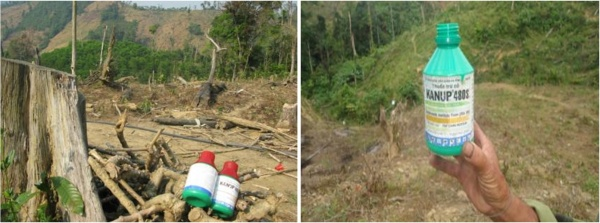 Figure 16. Herbicides found in one of the villages. These observations are recent. (Photo: Le)