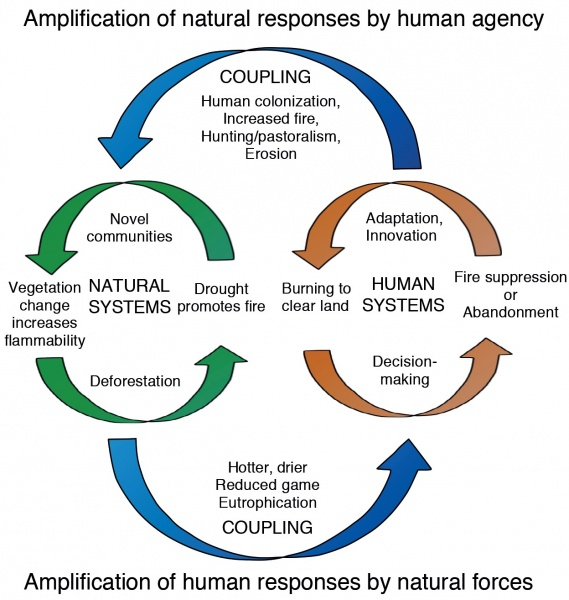 Figure 3.  Coupled Human-Environment Model of the Andean Amazon flank showing the flows of energy, matter and processes to function as a Socio-Ecological System.  Modified from Prof. Mark B. Bush's ideogram of the complex, adaptive system operating in Tropanden landscapes.