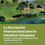 IPSI pamphlet cover Spanish