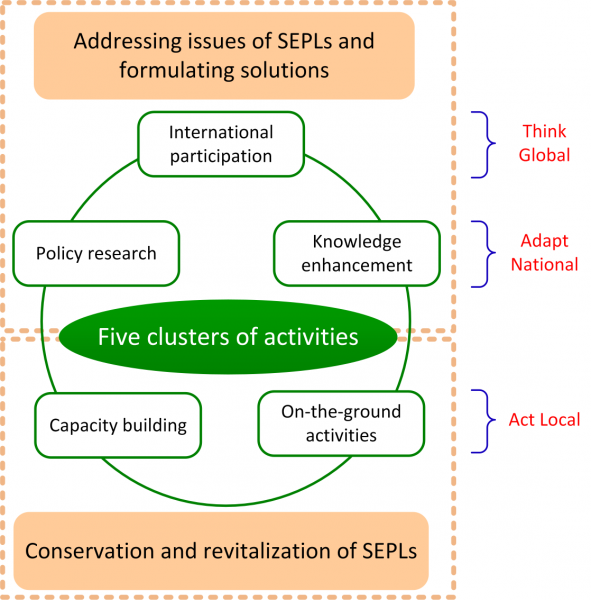 Figure 2. A Strategic Framework for TPSI (based on IPSI Operational Framework, 2010)