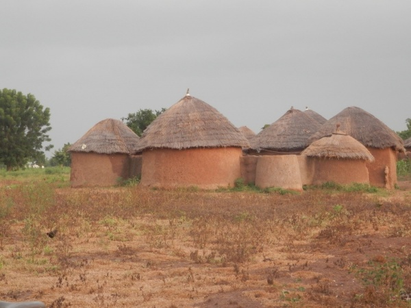 Photo 3: Compound field in the dry season in Fihini village. Livestock graze on these fields, generating manure as dung and urine. Photo credit: Yaw A. Boafo 2015
