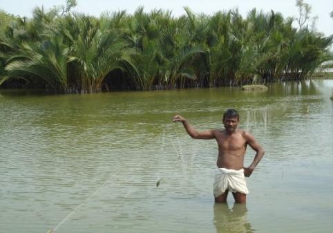 Figure 6. A CMAAS Farm (Source: Unnayan Onneshan)
