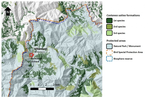 Figure 13. Relative position of the recovered orchard in Villamorei (red circle) with respect to protected areas (Natural Parks and Monuments, Bird Special Protection Areas, or Biosphere Reserves). Chestnut forest typologies show where the species is dominant (first), or is the second or third species in abundance.