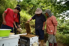 The community forestry research team has pass on under-forest beekeeping experience to Wutai communities since May 2018.