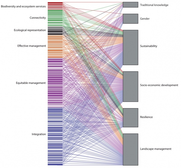 Figure 7. Bipartite network illustrating interactions between SEPLS-related commitments (left) and perspectives of the Satoyama Initiative (right). Commitments were coloured according to their contribution to the elements of Aichi Biodiversity Target 11: biodiversity and ecosystem services (red), connectivity (green), ecological representation (black), effective management (orange), equitable management (purple) and integration (blue).