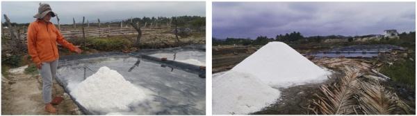 Figure 8. Artisanal production of salt in Las Gilces ©FIDES